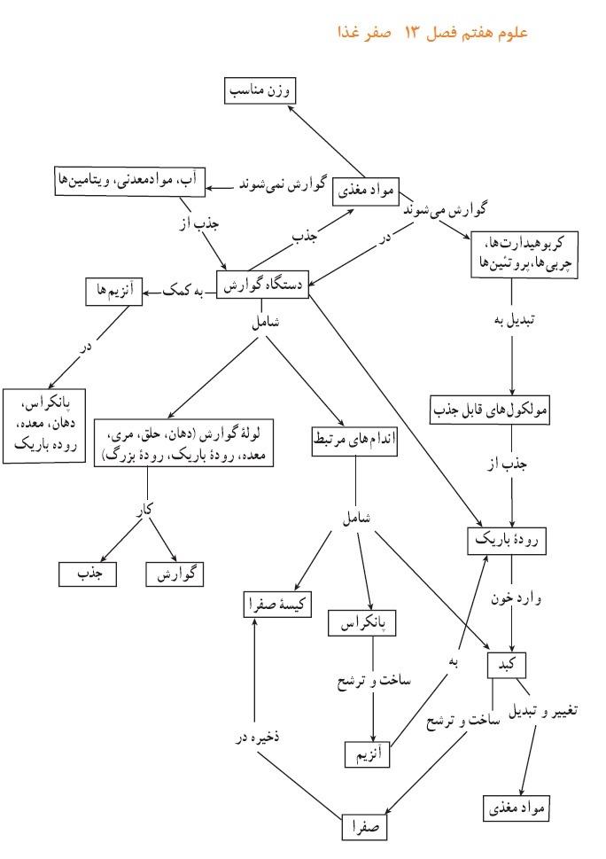 نمونه سوال تشریحی علوم هفتم فصل 13 با پاسخ