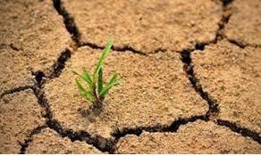 علوم هشتم فصل 13 : هوازدگی و خاک