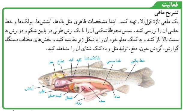 فعالیت صفحه 145پاسخ نامه فعالیت های علوم نهم فصل 14