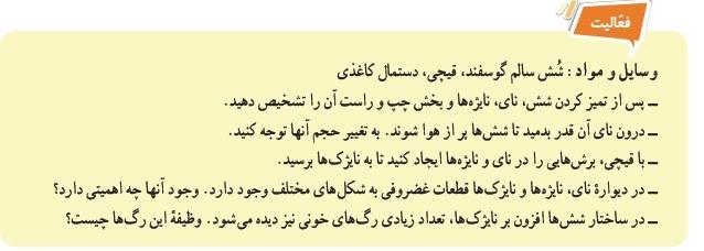فعّالیت صفحه 125 علوم هفتم فصل 15