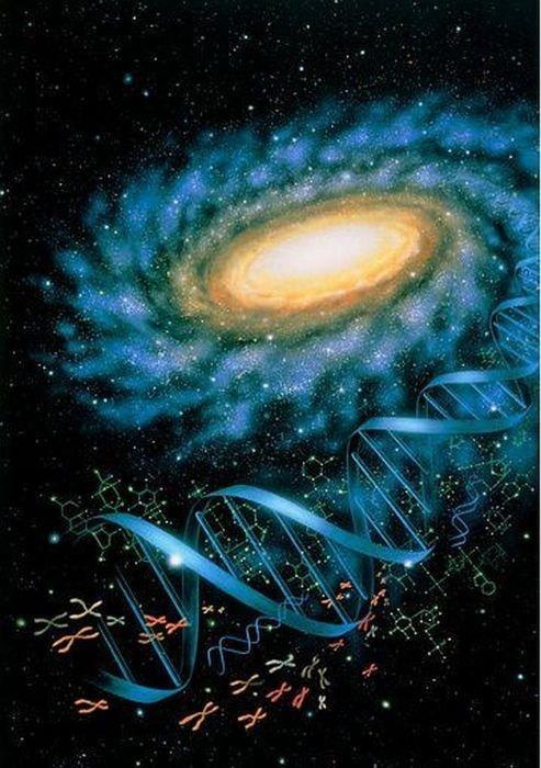 پاسخ نامه نمونه سوال علوم هشتم فصل 7 : زیست فناوری