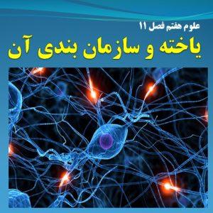 فیلم آموزشی تدریس فصل 11 علوم هفتم